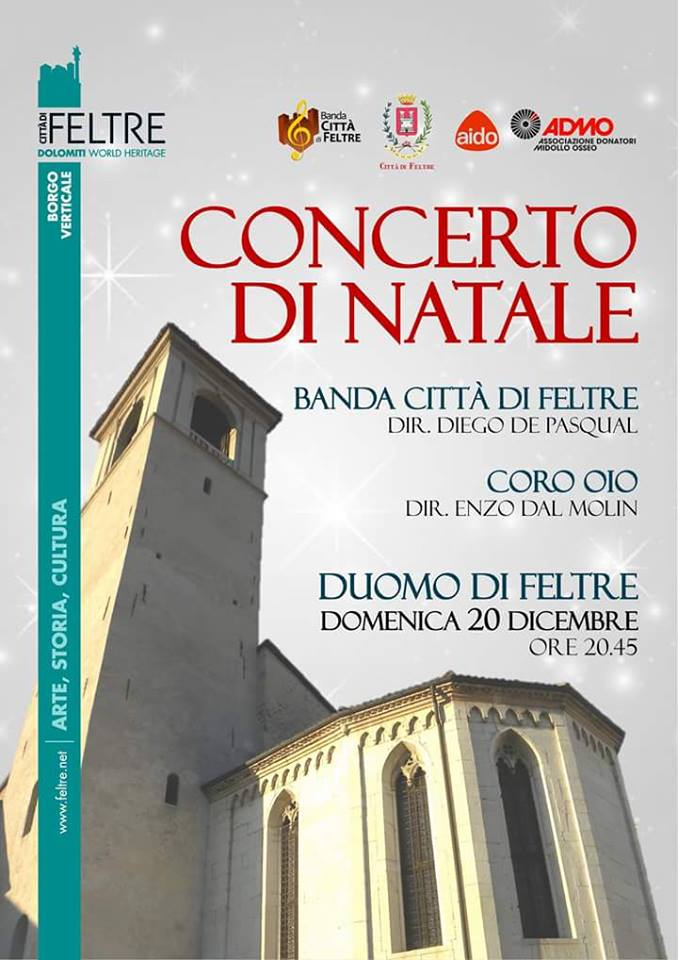 Concerto di Natale duomo di Feltre 20 dicembre 2015